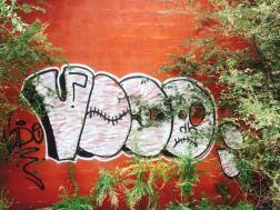 PicDX46