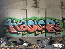 IMG_E9028