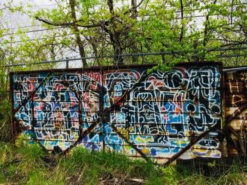 IMG_E6069